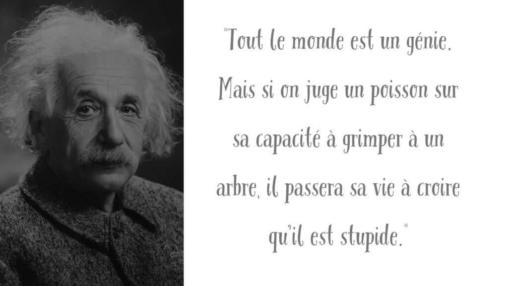 Citation Einstein Résilience